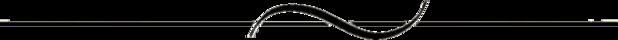 divider-line-black-space.png