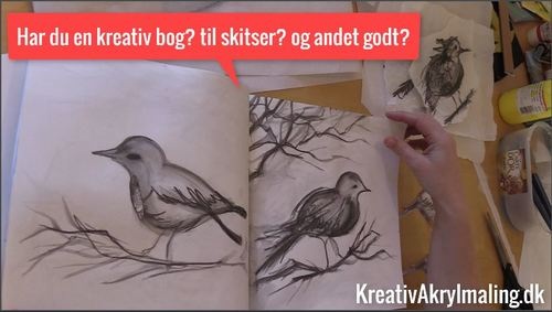 Fugle-Skitsering-Grafitpen-i-kreativ-bog-large.JPG