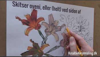 Pippi-skitse-blomst-medium.JPG