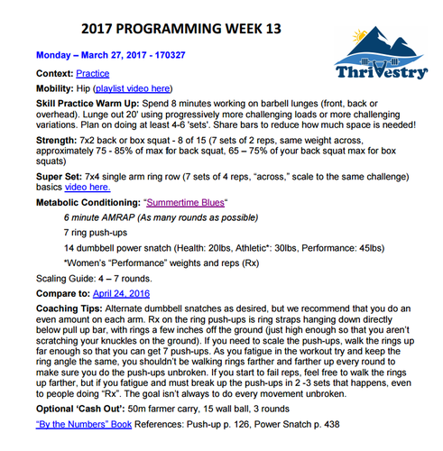 thrivestry-Daily-programming-screenshot-large.png
