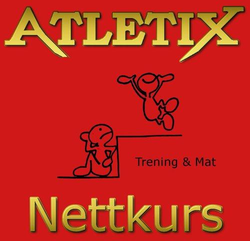 AtletixNettkursGull-large.jpg