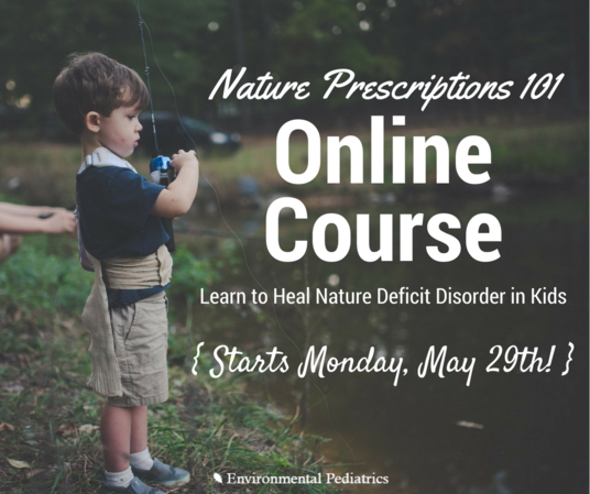 FB-3-NDD-Course-email.png